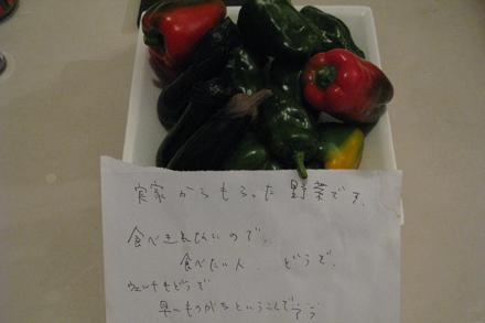 p_minna_02.jpg